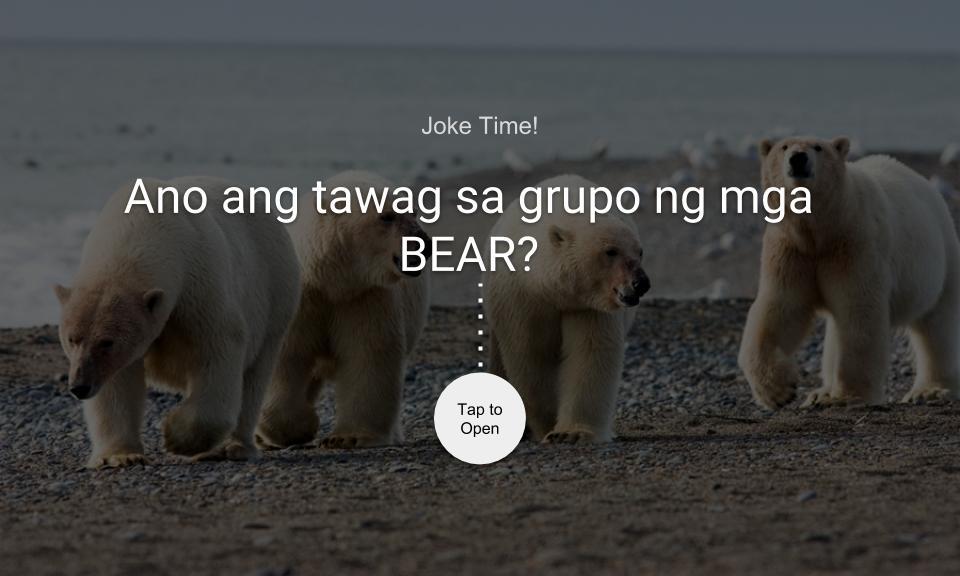 Ano ang tawag sa grupo ng mga BEAR?