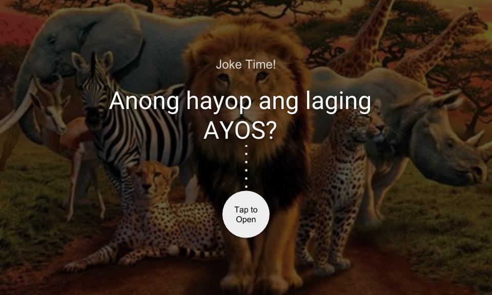 Anong hayop ang laging AYOS?