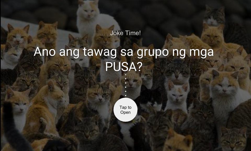 Ano ang tawag sa grupo ng mga PUSA?