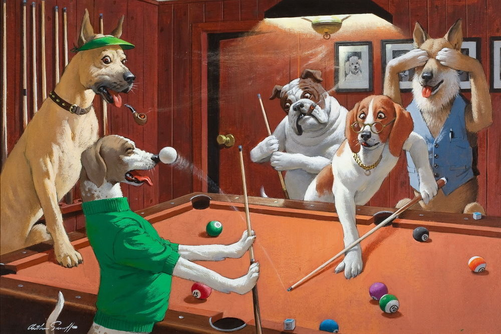 We found Dogs playing Billiards!