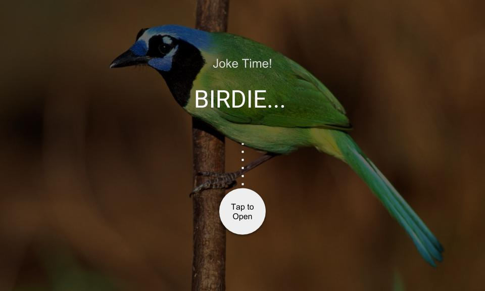 BIRDIE…