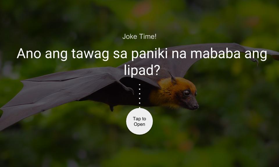 Ano ang tawag sa paniki na mababa ang lipad?