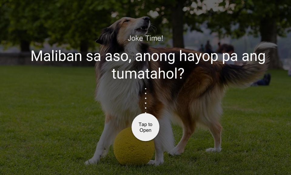 Maliban sa aso, anong hayop pa ang tumatahol?