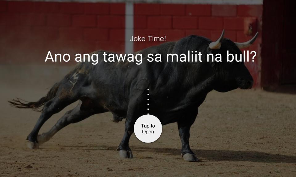 Ano ang tawag sa maliit na bull?