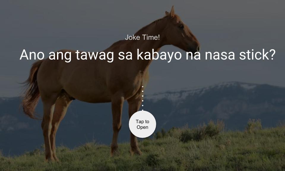 Ano ang tawag sa kabayo na nasa stick?