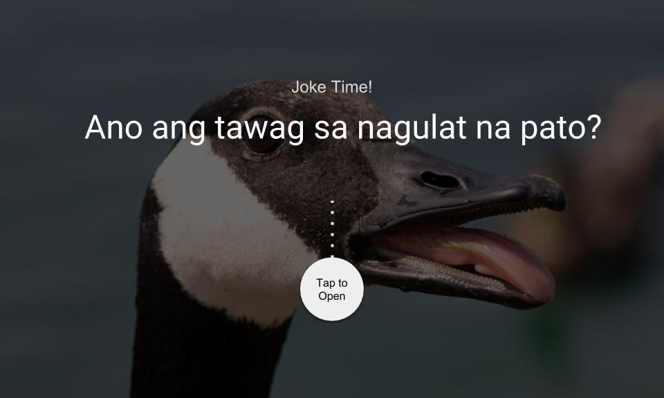 Ano ang tawag sa nagulat na pato?